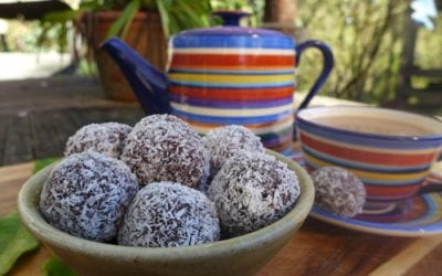Raw cacao and almond meal bliss balls