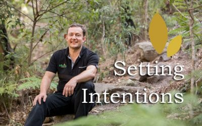 Setting Quality Intentions: Top Eight Tips by Paul von Bergen