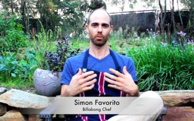 What is healthy food by Simon Favorito