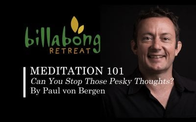Meditation 101: Can You Stop Those Pesky Thoughts by Paul von Bergen?