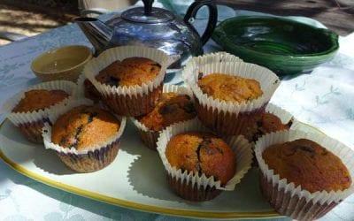 Coconut Flour Blueberry Muffins – gluten, dairy & sugar free!